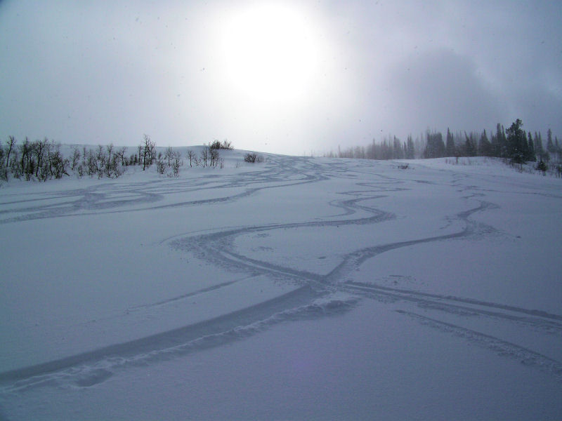 Powder Mountain - Still some nice turns to be had in Cobabe Canyon