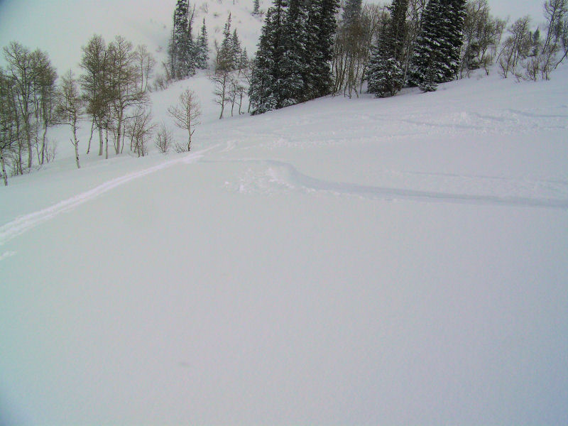 Powder Mountain - last of the descent to the cat track in Cobabe