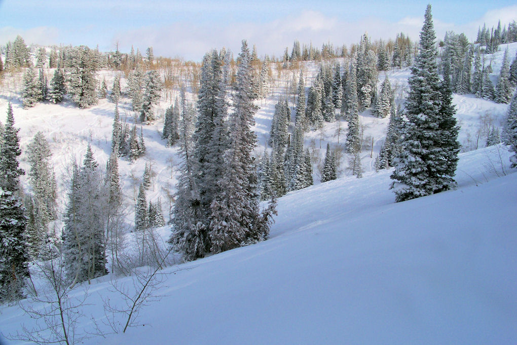 Powder Mountain - With a bit of work you still find untracked patches