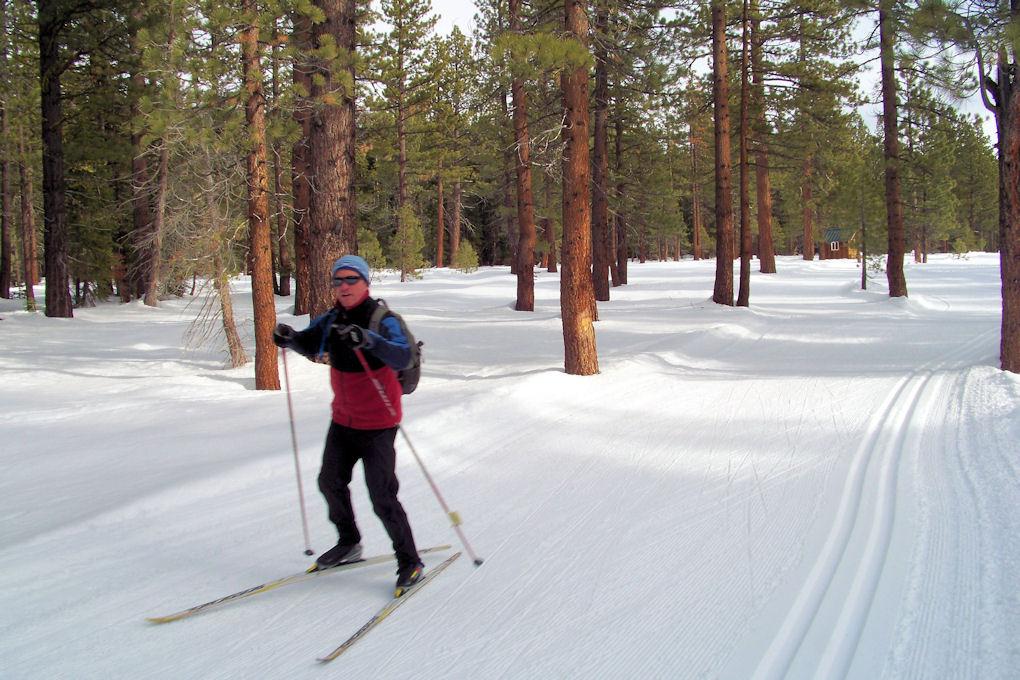 Tahoe XC - On Green Trail