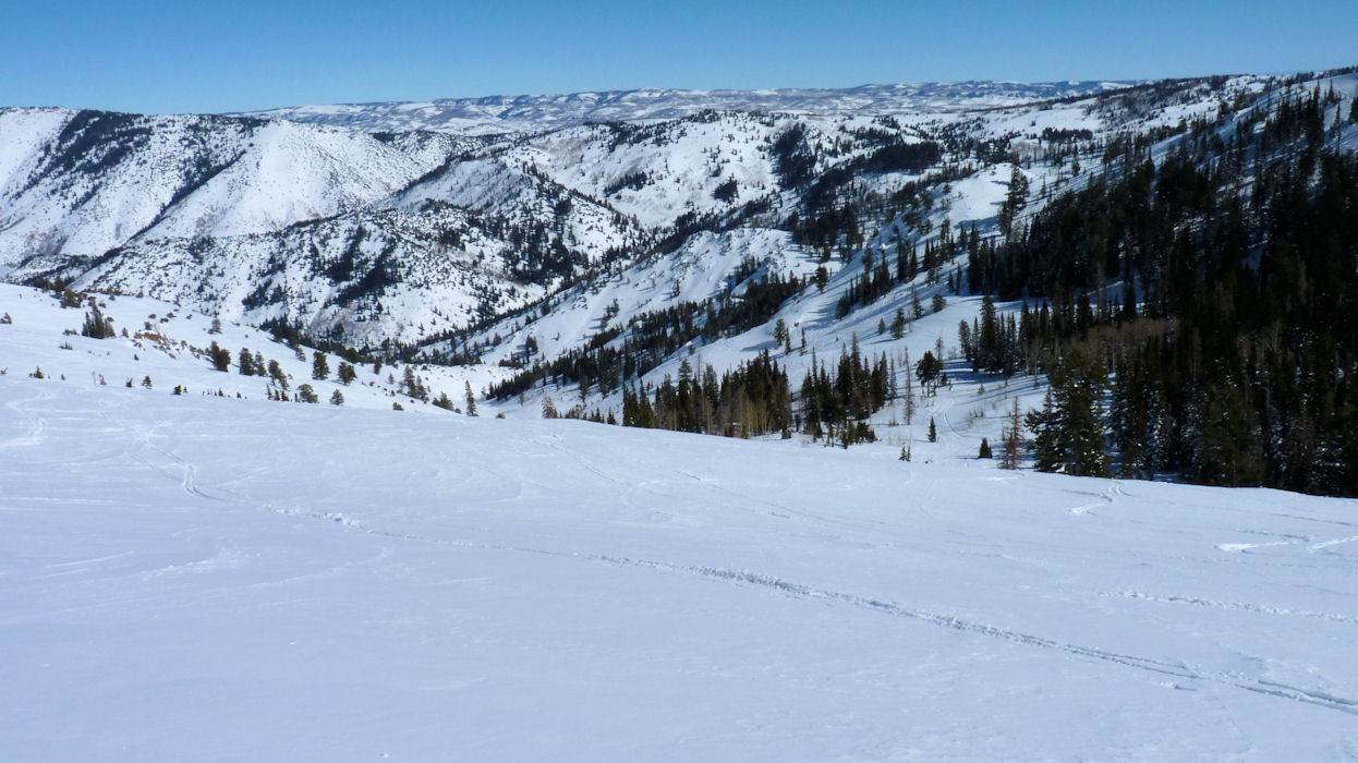 Looking down cat skiing valley