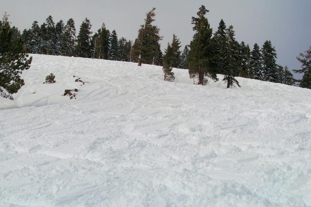 Alpine Meadows - looking back up Sherwood Bowl