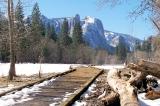 Yosemite - walkway across meadow