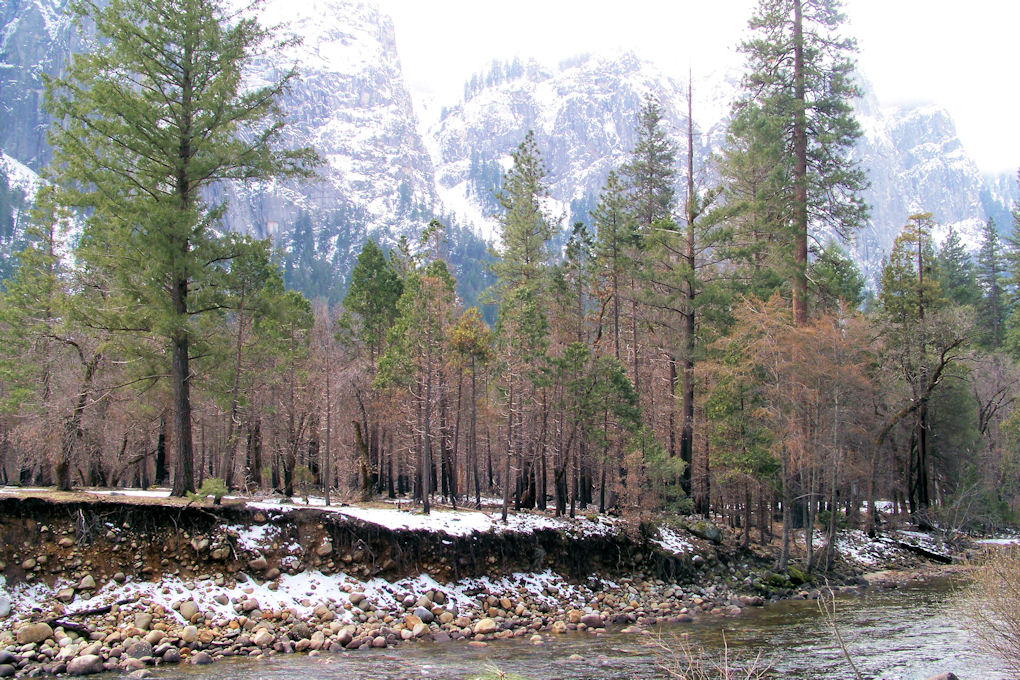 Yosemite - Merced River exiting valley